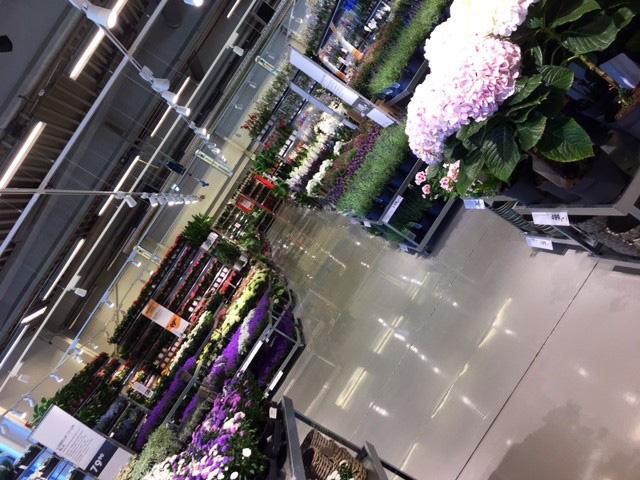 Plantasjen åpnet på Midstranda Hamar